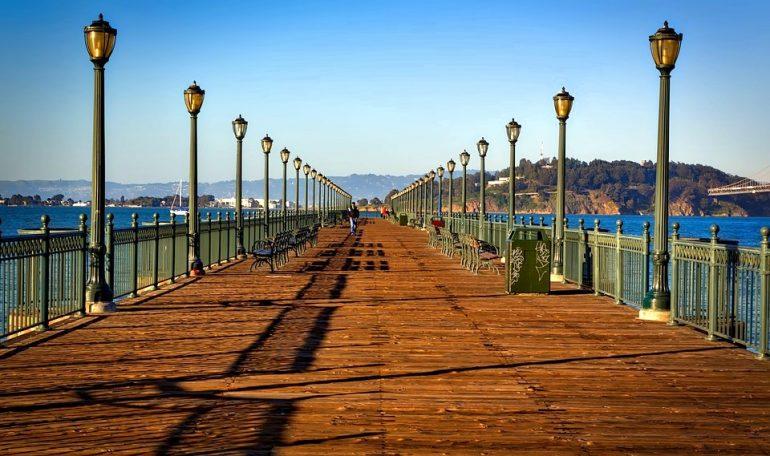 The Pier 39 Sea Lions